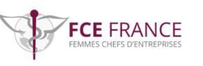 https://ilelumiere.fr/wp-content/uploads/2018/06/logo-fce-60-e1528877536580-400x130.jpg